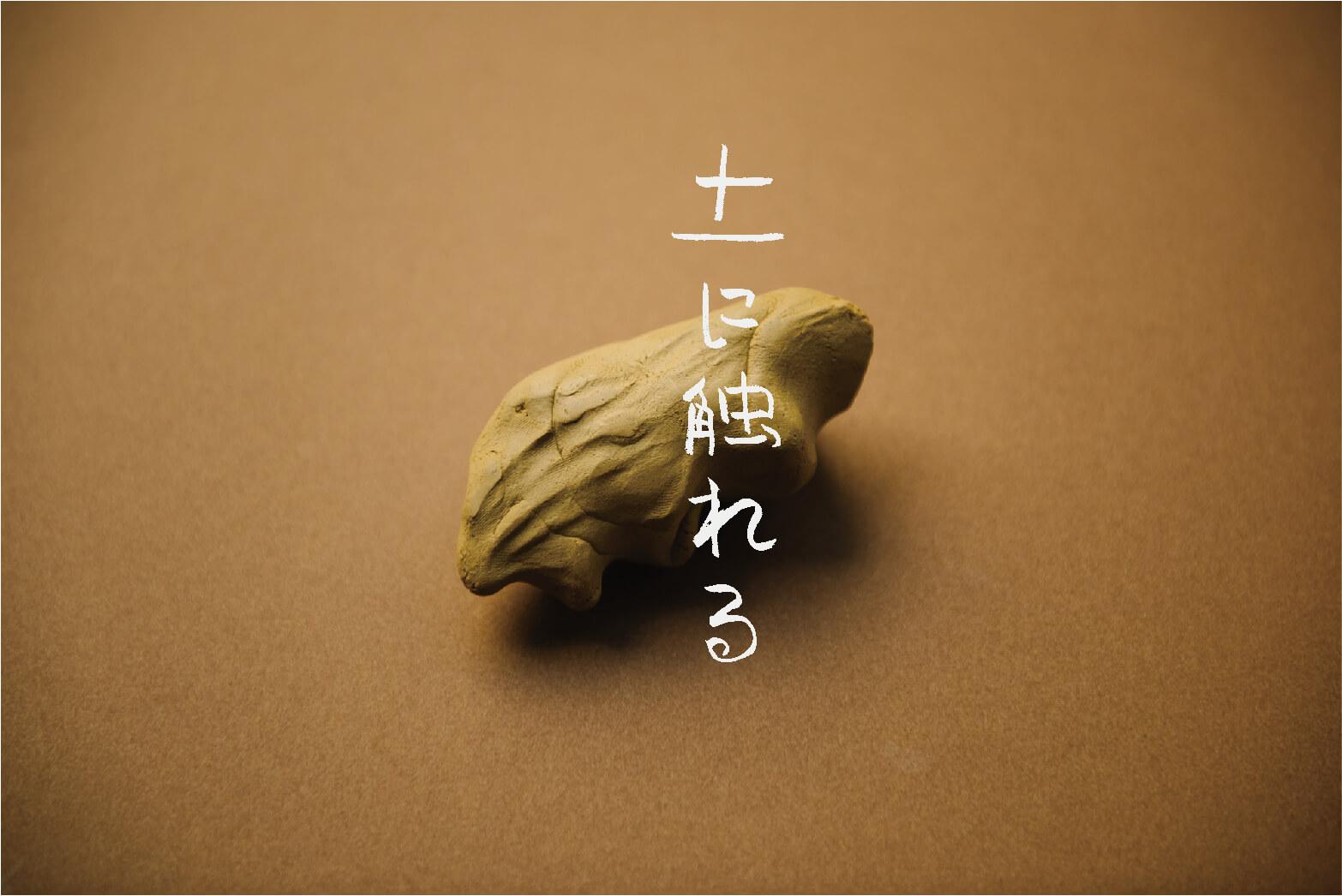 ゆかいWS「土に触れる」02